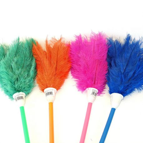 Premier houseware FEATHER DUSTER RAINBOW (DYED OSTRICH FEATHERS) Product Code 1522